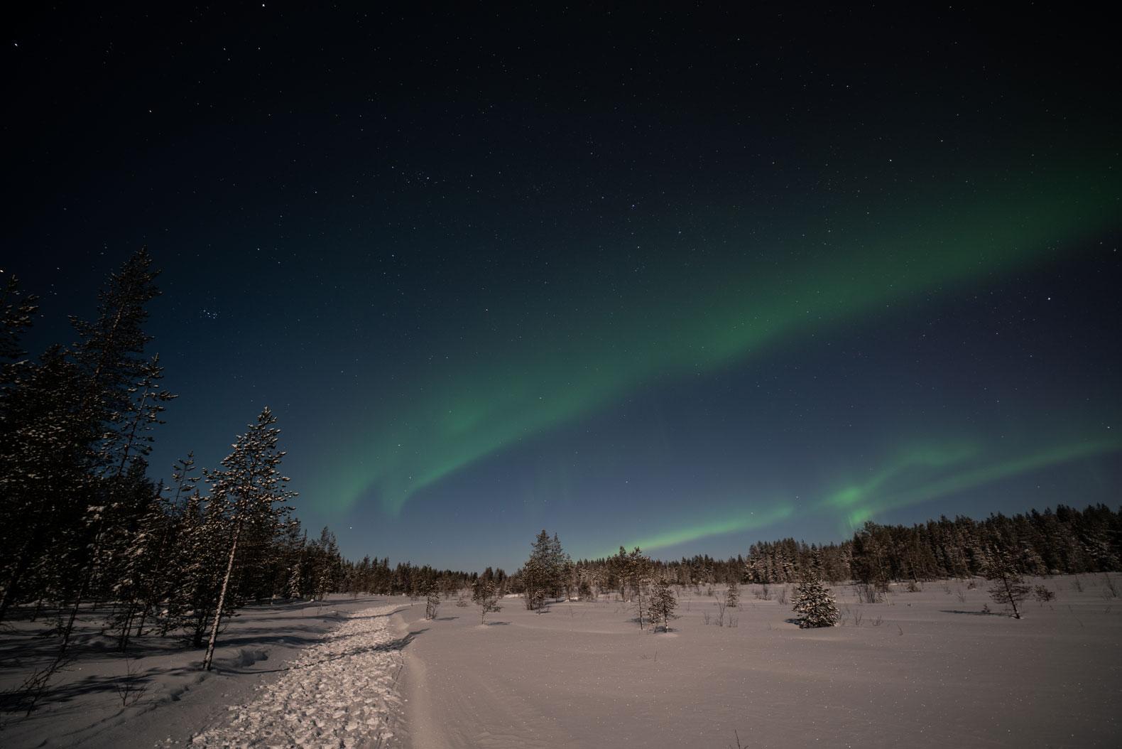 Noorderlicht-5